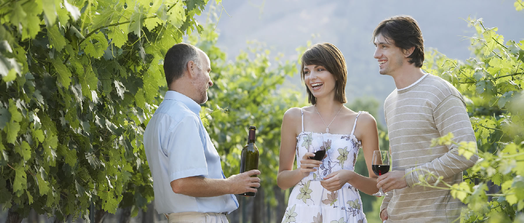 Shortlist Marketing & Tours   Visit Yarra Valley